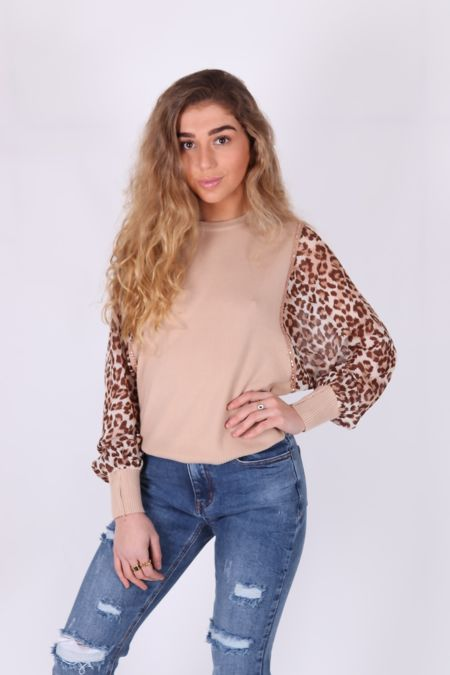 Leopard Print Sleeved Jumper
